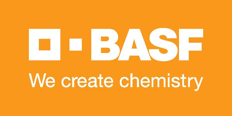 BASF SE logo on global website
