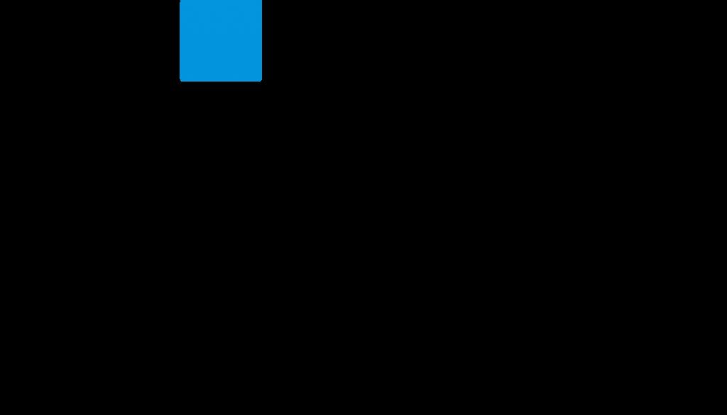 Donostia International Physics Centre logo