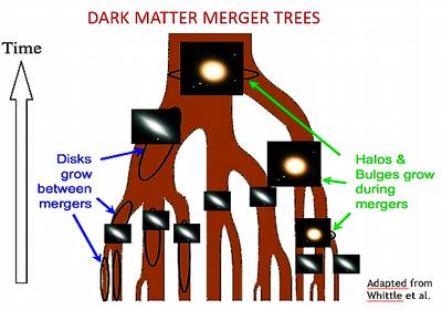 Dark Matter Merger Trees