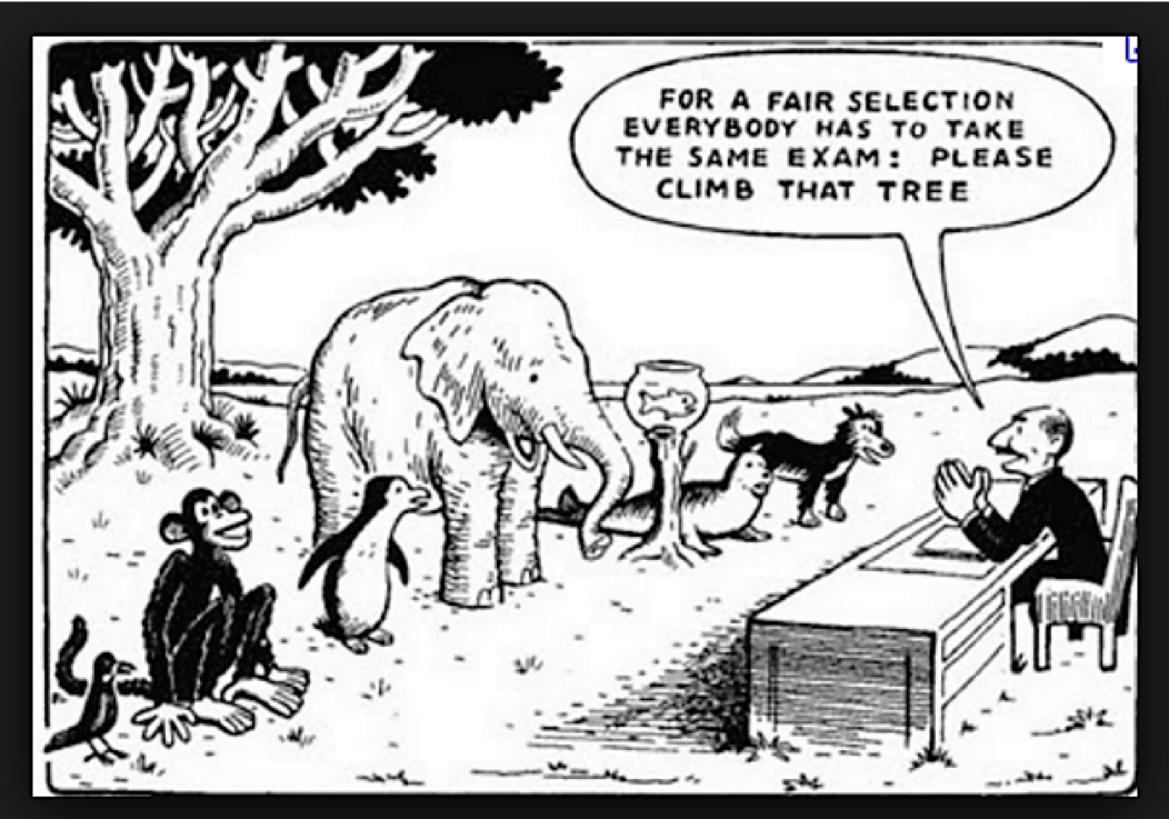 """A groups of animals (including a goldfish, a seal, a monkey and a bird) are standing oin front of an examiner. He says """"For a fair selection everybody has to take the same exam: please climb that tree""""."""