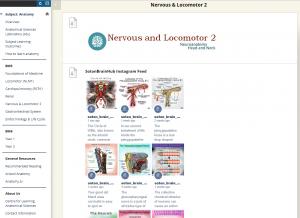 Screenshot from Nervous & Locomotor 2 Blackboard site, showing Instagram feed