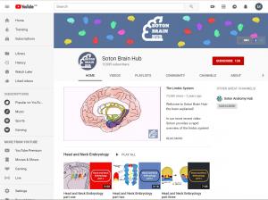 Screenshot from Soton Brain Hub YouTube channel