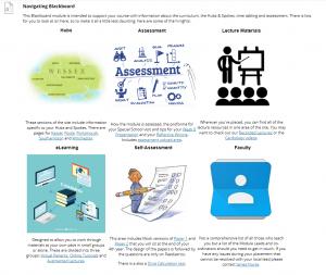 Screenshot from Child Health Blackboard site navigation page