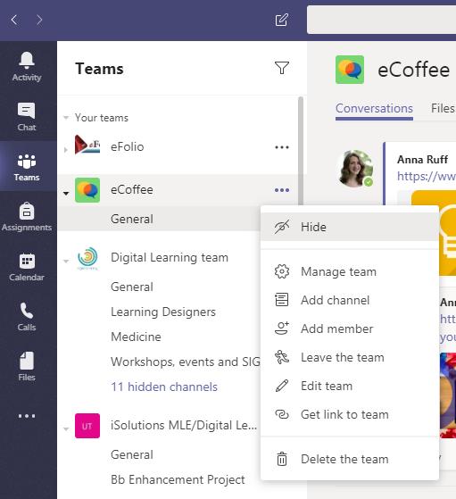 Screenshot showing menu for team settings in Microsoft Teams