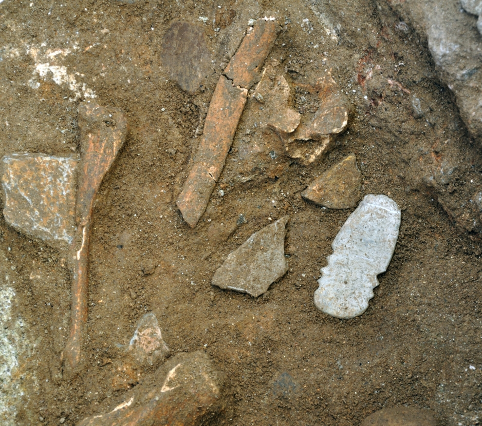 Photo of an anthropomorphic figurine and some animal bones placed together within Ditch 1 at Perdigoes (Reguengos de Monsaraz, Portugal).