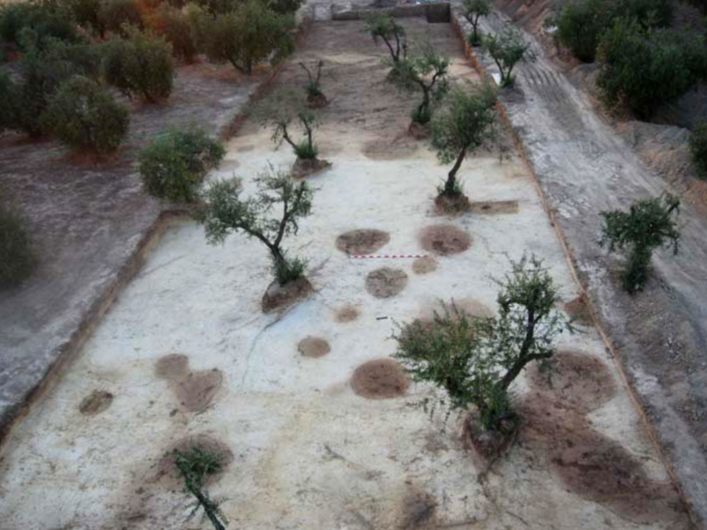 Photo of Two parallel prehistoric ditches evidencing the presence of at least two ditched enclosures at the site (in the background), and pits (in the foreground), at Valencina de la Concepción (Sevilla, Spain)