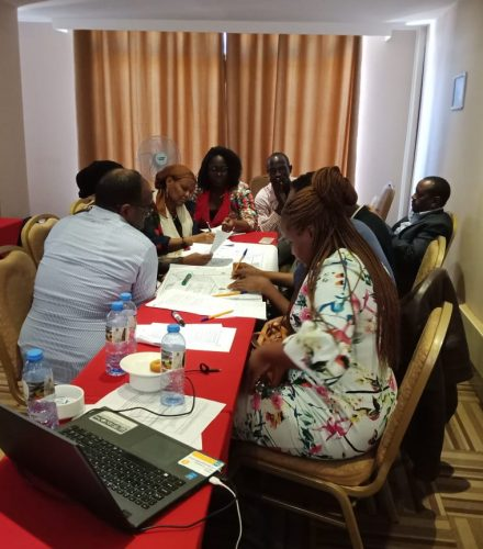 Reflecting on BRECcIA's Kenya stakeholder workshop: