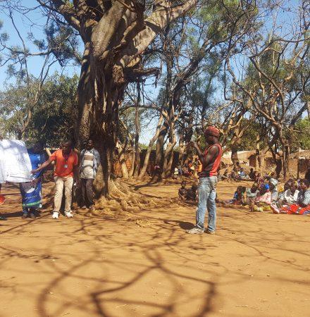 Policy Summer School Malawi 2020