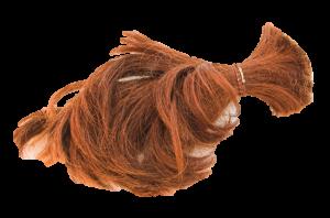 hair-1424731