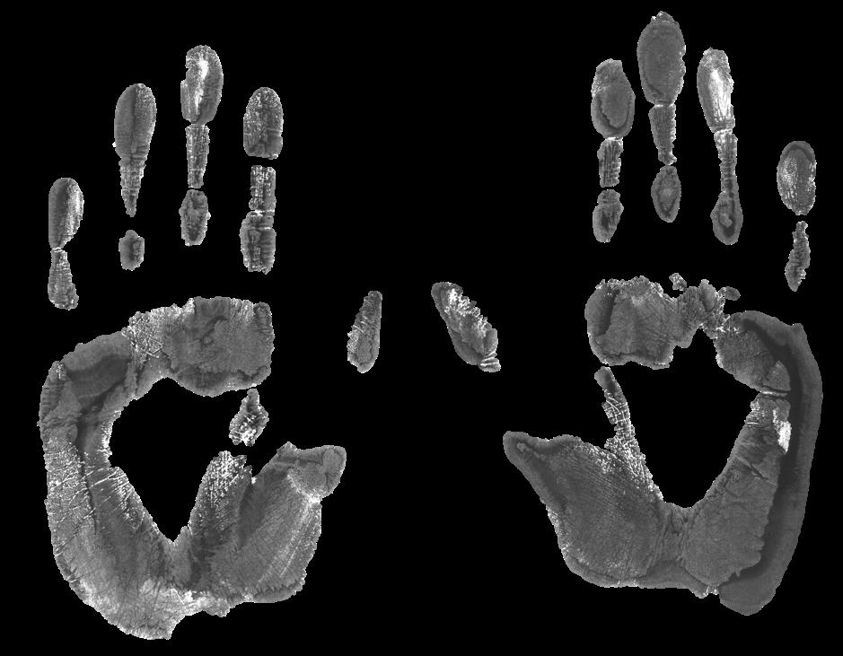 three-fingers-1523369