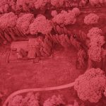 Infra-red aerial photograph of the area in the vicinity of the Grandi Magazzini di Settimio Severo at Portus (Photo: Geert Verhoeven/ Portus Project)
