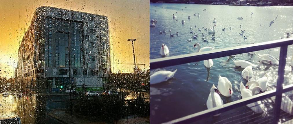LoveSouthampton Collage