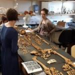 Bioarchaeology & Osteoarchaeology @ Southampton Interns (#BOSI)