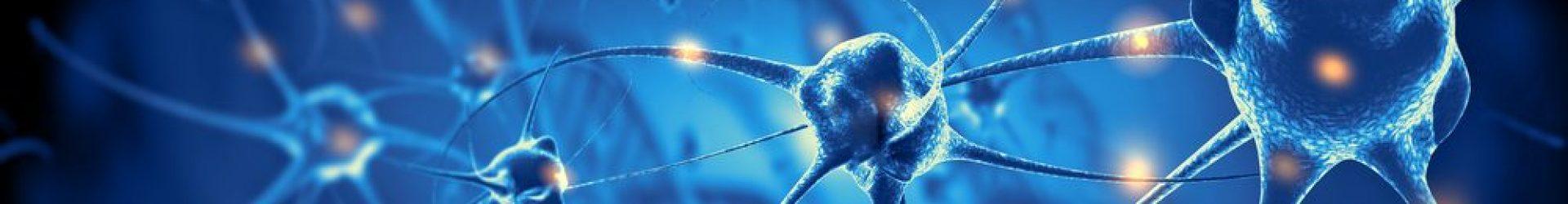 Discover Neuroscience