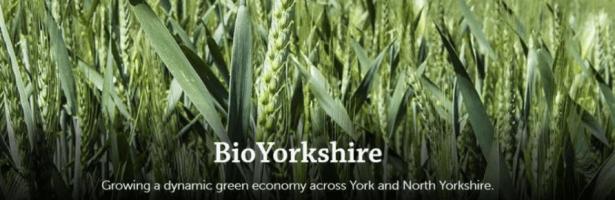 BioYorkshire Survey