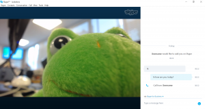 Skype external user view