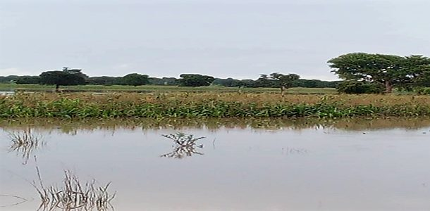 An assessment of flooding from dam releases and its impacts on diarrhea disease and microbiological contamination of water sources and vegetables in selected dryland areas in Northern Ghana.