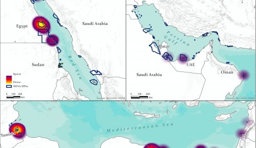 Policy Brief- Marine Protected Areas and Cultural Heritage