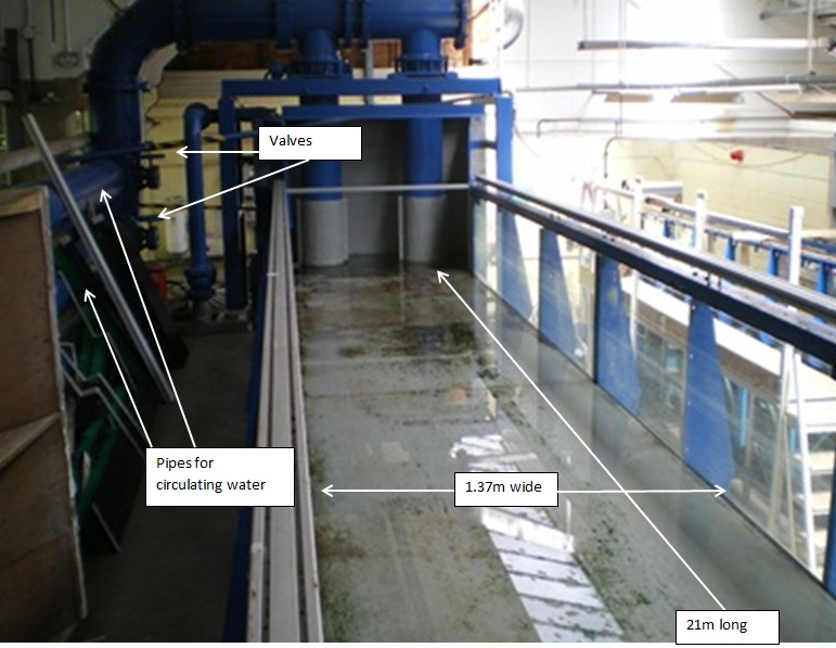 Experimental analysis of tidal turbine arrays.
