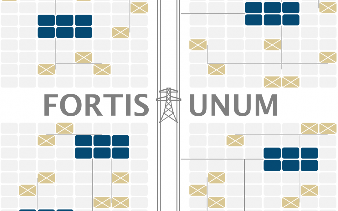 FORTIS UNUM (Stronger As One): Clustering Mini-Grid Networks to Widen Energy Access and Enhance Utility Network Resilience
